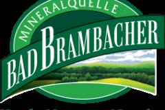 Bad Brambacher Mineralquelle